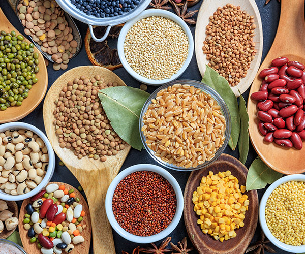 product_category_legumes